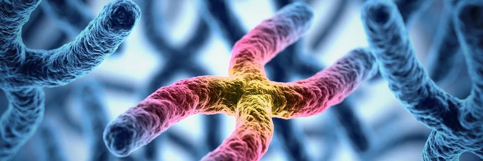 Örörklődő rák kockázat szűrés