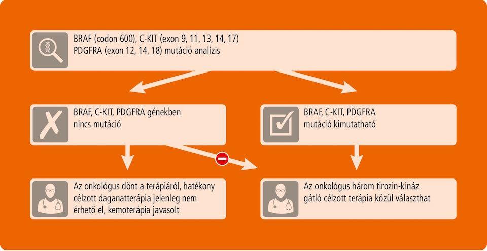 GIST mutáció vizsgálat